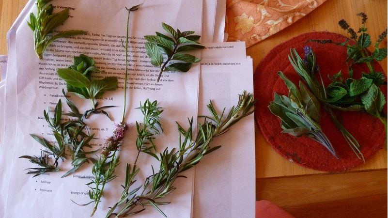 Gewürze und Heilkräuter helfen heilen im Ayurveda