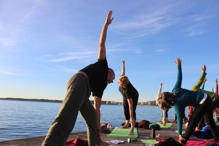 Angepasstes Yoga, Viniyoga