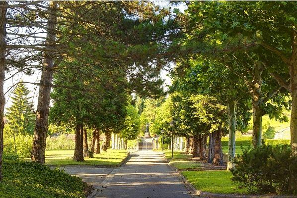 Auszeit im Kloster Natur spüren